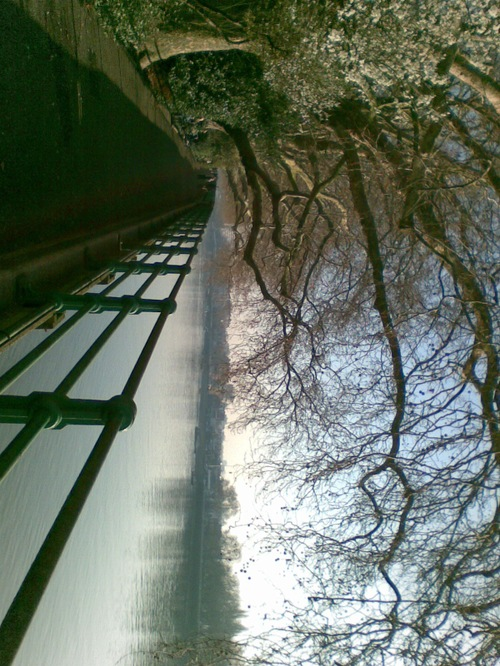 Fulham_river_walk3