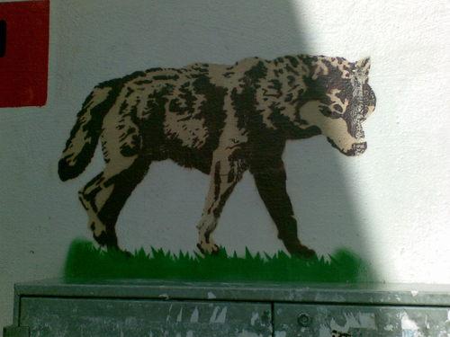 Graffitti_woolf
